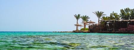 Palm trees on coast and clear blue sea photo