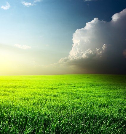 rowth: Sunset over green meadow with big fluffy cloud Stock Photo