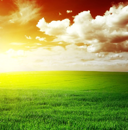 rowth: Green meadow and red sky with clouds