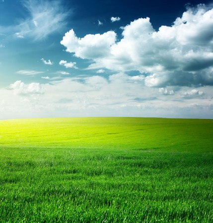 rowth: Green meadow and blue sky with clouds