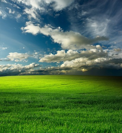 rowth: Storm clouds over meadow with green grass Stock Photo