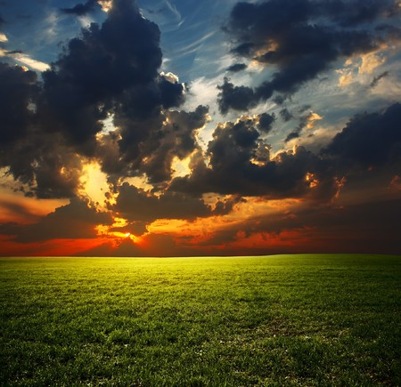 rowth: Meadow with grass and sunset clouds