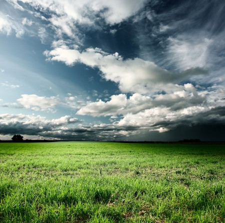 Storm clouds above meadow with green grass photo