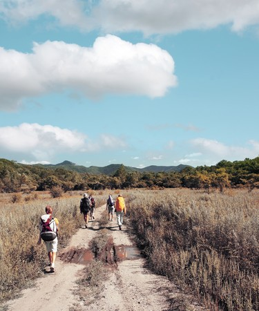 Group of backpackers walking on rural road Stock Photo - 7296726