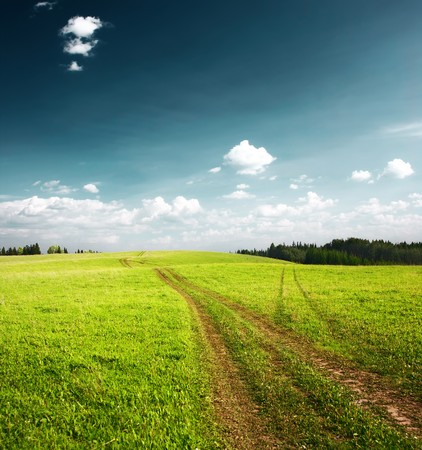 Rural road in green meadow near forest Stock Photo - 7296762