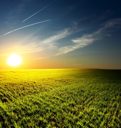 Sunset over field with green grass Stock Photo - 7296709