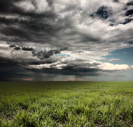 storm clouds: Storm clouds with rain over meadow with green grass