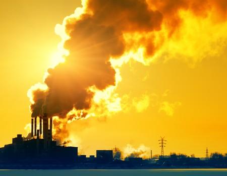 savings problems: Smoking plant and sunlight