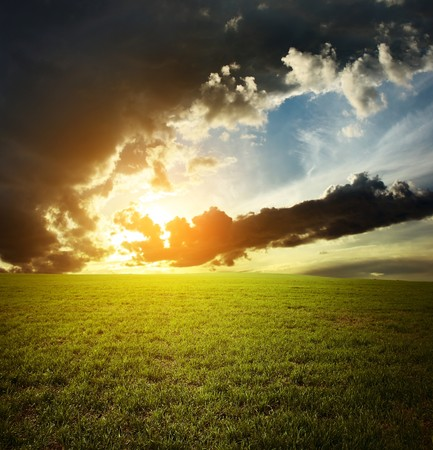 Sunset over field with green grass Stock Photo - 7470119