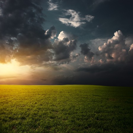 Sunset over field with green grass Stock Photo - 7470128