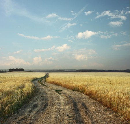 dirt road: Road in field and blue sky with clouds Stock Photo