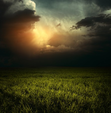 rowth: Storm clouds over green meadow with grass Stock Photo