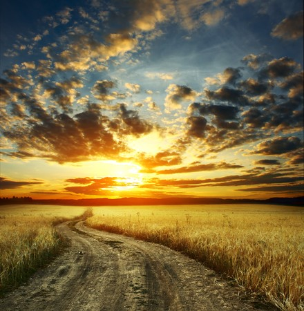 dirt road: Road in field and cloudy sunset
