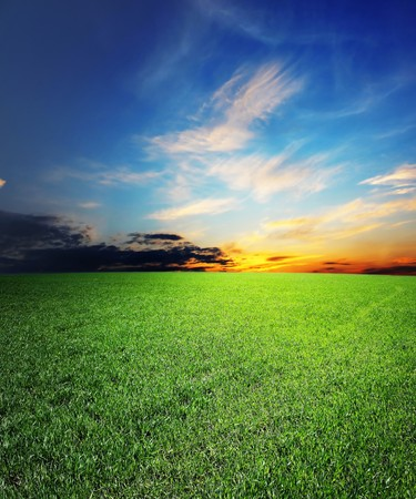Dramatic sunset over green field Stock Photo - 7585840