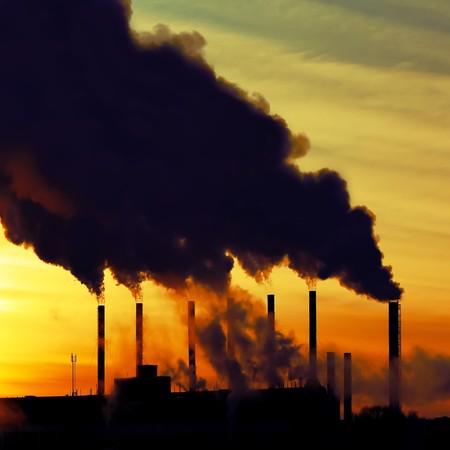 contaminacion del medio ambiente: Planta de fumar