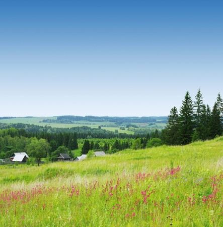 Rural landscape with wild meadow, alone buildings, trees and blue sky photo