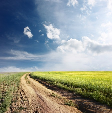Road in field and blue sky with clouds photo