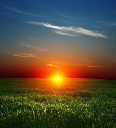 rowth: Sunset over field with green grass and sky with clouds Stock Photo