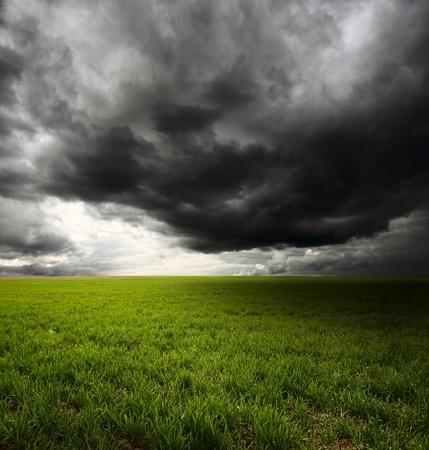 Donkere wolken vliegen over veld met groene gras Stockfoto