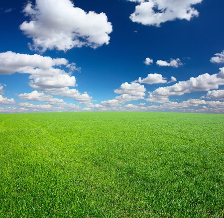 Green grass and blue sky with clouds photo