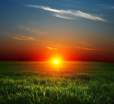 Sunset over field with green grass and sky with clouds photo
