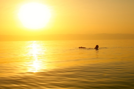 israel people: Woman swimming in a solt water of Dead sea.