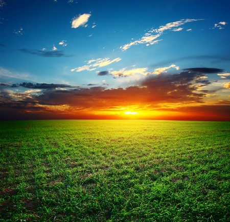 Sunset over field with green grass and sky with clouds Stock Photo