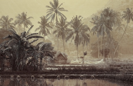 fishing scene: Small wooden house with fishing net in tropical forest near pond