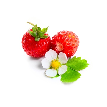 Wild strawberies heap closeup with green leaves and flower isolated on white