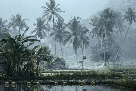 Small house with fishing net in tropical forest near pond photo