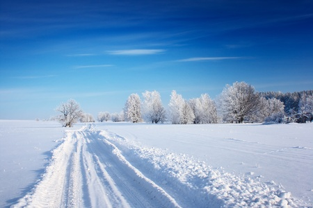 snowy field: Countryside road through winter field with forest on a horizon Stock Photo