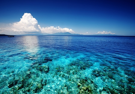 shallow: Blue shallow sea with coral reef and fluffy clouds on the horizon