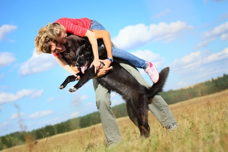 tilt: Young family having fun with their big dog on a countryside meadow.