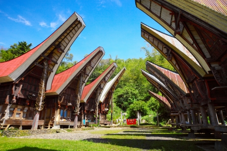 Traditional homes of the Torajas people on Sulawesi island. Indonesia.