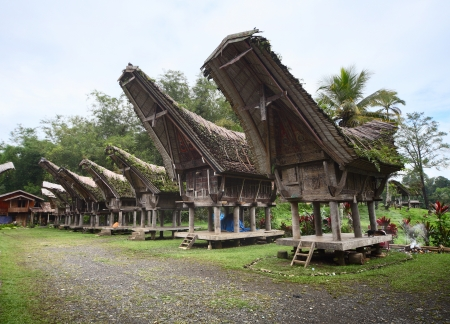 bamboo house: Old traditional buildings in Toraja region