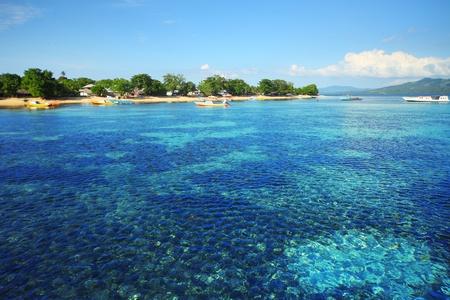 arrecife: Los arrecifes de coral en el parque nacional de Bunaken. Zona cerca del pueblo de Bunaken. La isla de Sulawesi. Indonesia