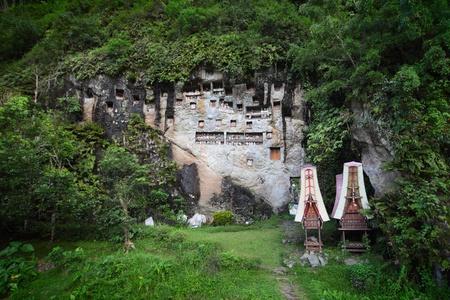 toraja: Traditional statues tau tau on a rock wall. Toraja region of Sulawesi island. Indonesia