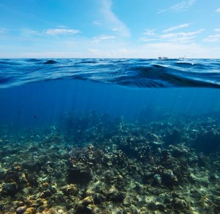 combined: Rodaje submarino de los arrecifes de coral se combina con la superficie del mar con olas y cielo azul