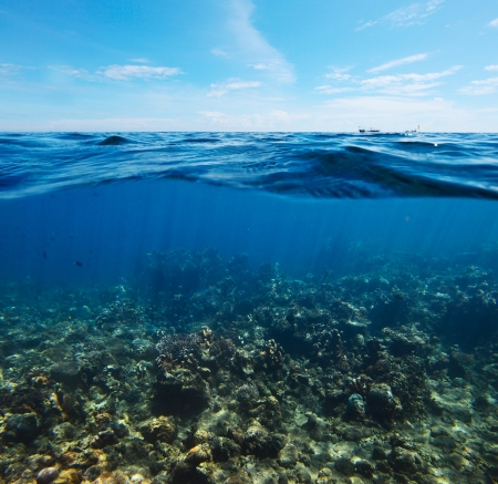 Underwater shoot of  coral reef combined with sea surface with waves and blue sky
