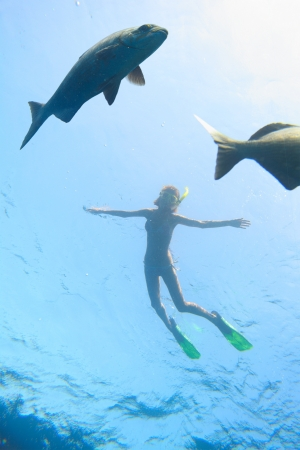 gills: Underwater shoot of a young woman snorkeling in transparent sea and looking to a big fish fining on depth