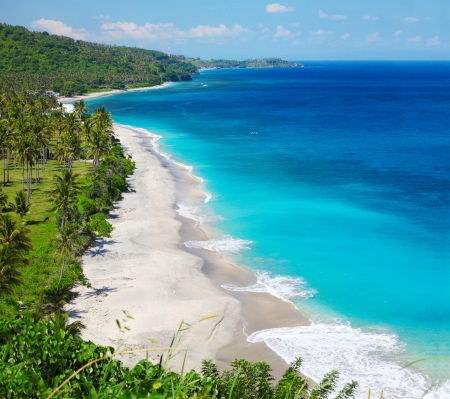 lombok: Tropical sandy beach with palm trees at sunny day. Lombok island, Indonesia
