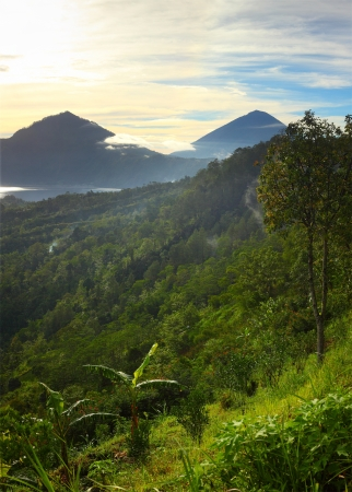 stratovolcano: Mountains with lake (Batur) in caldera and wet grass on the foreground at sunrise