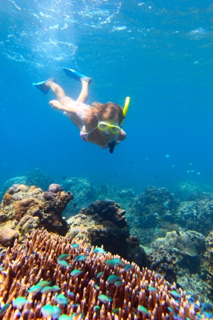 Young woman diving on a breath hold and finning over coral reef in blue transparent sea photo