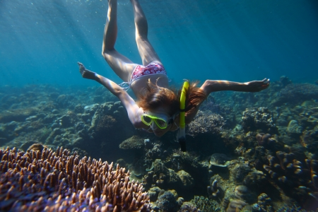 breath hold: Young woman diving on a breath hold and enjoying a coral reef views in tropical clear sea Stock Photo