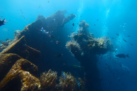 Underwater shoot of a ship wrecks part USAT Liberty with school of a fish