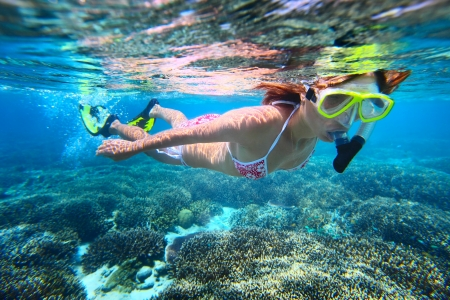 fining: Young woman snorkeling over coral reef in tropical sea with clear transparent water