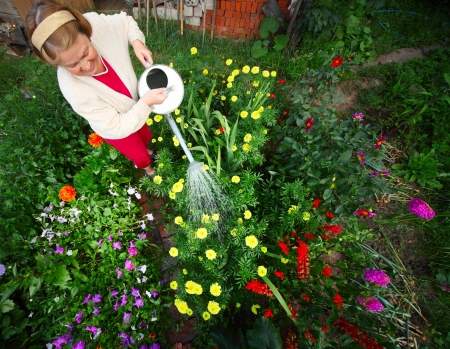 Mature caucasian woman watering her green garden with a lot of flowers photo