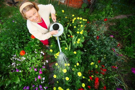 landlady: Mature caucasian woman watering her green garden with a lot of flowers
