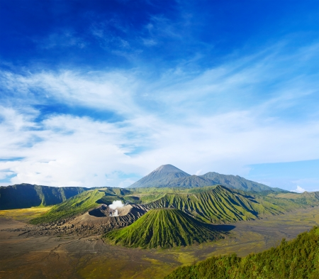 mountain ash: Volcanoes in Bromo Tengger Semeru National Park at sunrise. Java, Indonesia