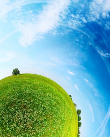 Een deel van een sferische panorama van een groene weide met bomen en de blauwe hemel